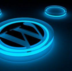 Wordpress Logo 251x250 - 5 Best WordPress Plugins for Bloggers